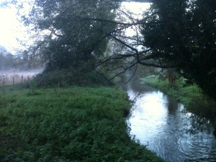 The Darent, late autumn, late afternoon