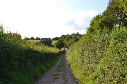 The track leading to the hill above Filston Lane