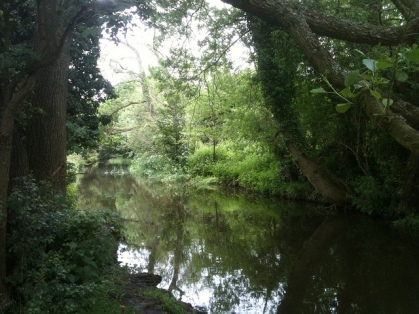 Darent river near Lullingstone visitors centre