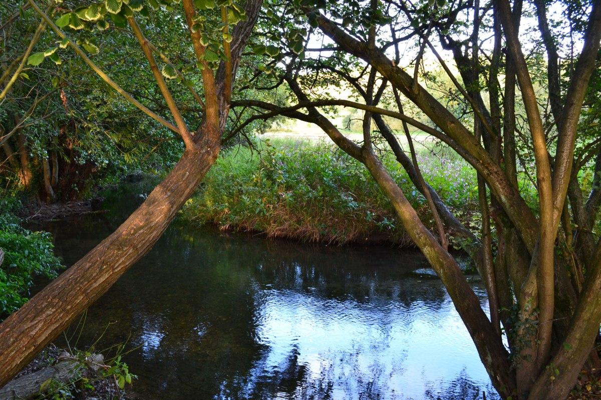 River Darent Shoreham-Eynsford