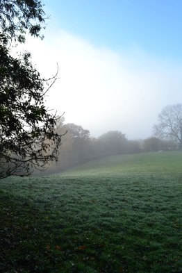 Fog bank approaches Ide Hill, autumn