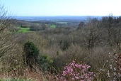 View from Emmetts Gardens looking south in early spring