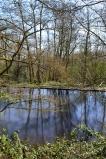 Ram pump pond, Scords Wood, near Ide Hill (walk 4)