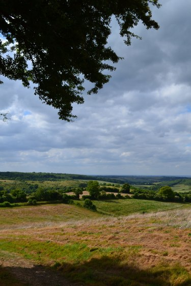 Otford-circ-port-view-2015-06-21-16.27.45