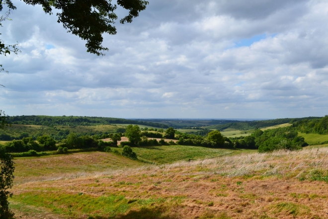 Otford-circ-view-big-2015-06-21-16.27.30