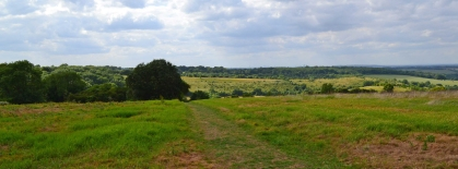 Otford-circ-wide-view-2015-06-21-16.24.49