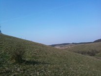 The steep climb on the stark chalk hills of the North Downs