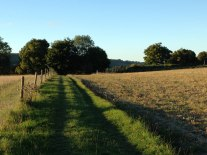 Darent Valley path