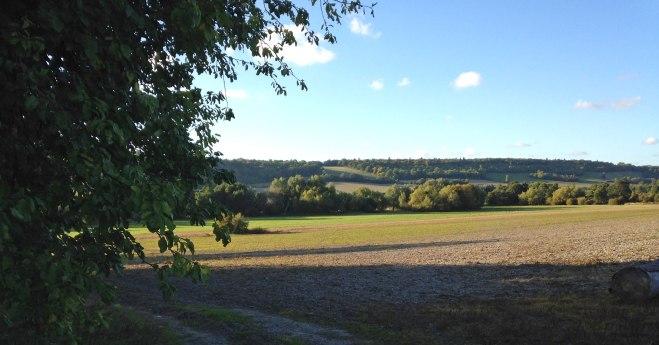 near Otford