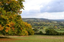 Autumn colours in field above Shoreham's Filston Lane (walk 2 and 8)