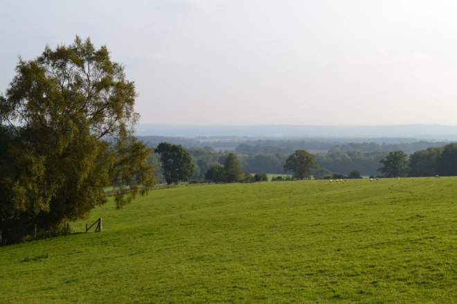 View of Kent Weald, near Ide Hill