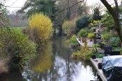 Water feature … Darent at Shoreham