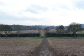 Path less travelled ... nearing Lullingstone, looking back