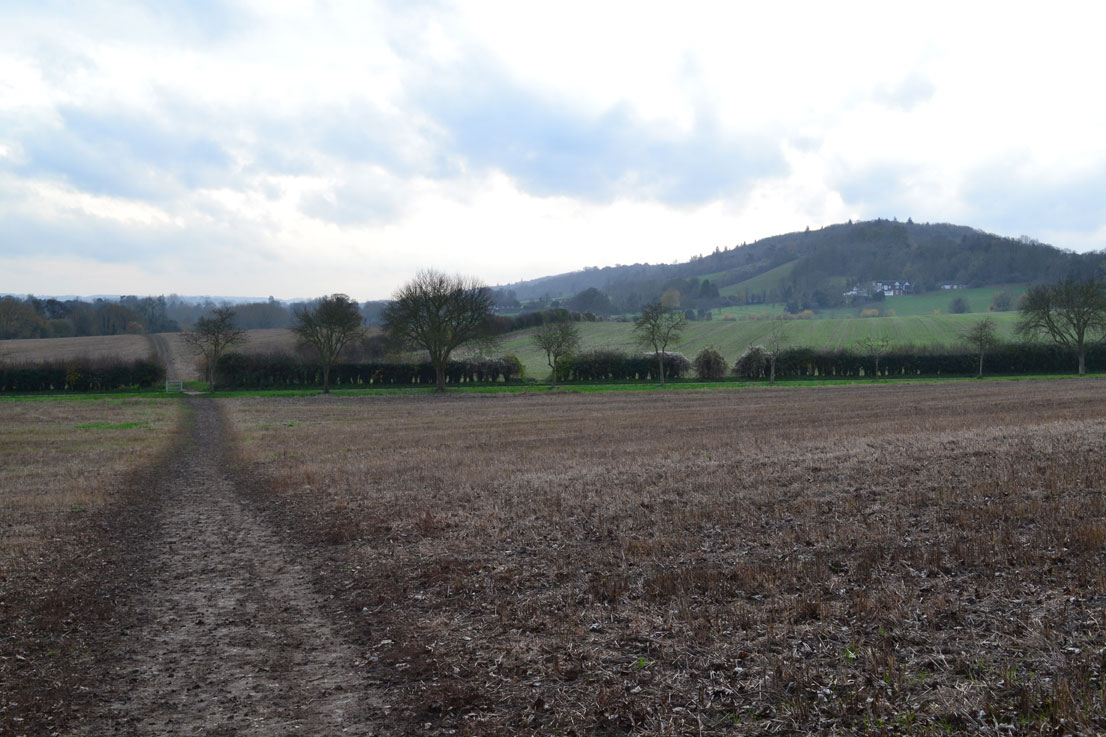 Eynsford path