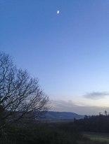 Winter moon, seen at Lullingstone