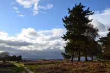 Storm on the way, Knole