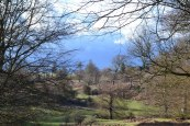 Stormy Monday at Knole