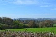 View towards greensand ridge from near Penshurst