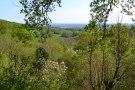 View across Bough Beech from Emmetts