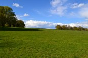 Meadow a mile east of Hever