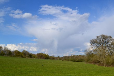 Ice fall from cloud over Penshurst April 30, Hever walk