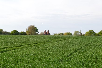 Oast houses, Chiddingstone