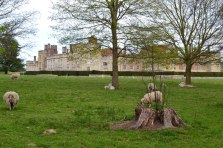 Penshurst Place from the road