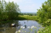 Pond and view north from Wat Stock Farm, Point 4-5