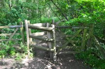 through-kissing-gate-early-on-2016-06-05-15.39.14