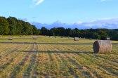 Hay bales close to Darwin's Sand Walk, Downe