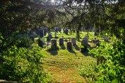 shoreham-gravestones