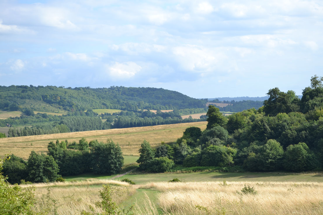 Darent Valley from Lullingstone's high point