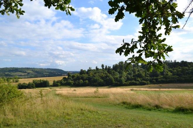 lullingstone2-summer