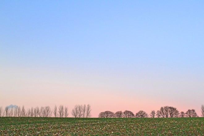 Eynsford Lullingstone flinty field, winter