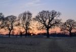 Shoreham, Dunstall Farm
