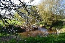 River Eden nr Penshurst