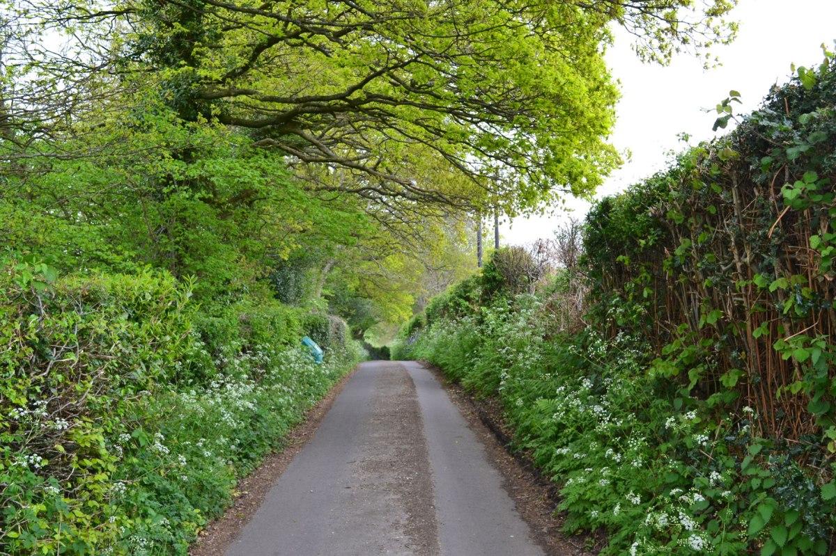 Norman Street, just approaching the hidden footpath. Ide Hill