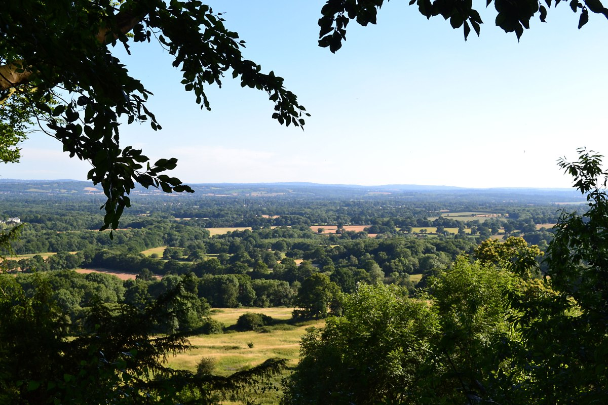 View from Wilmots Hill