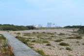 Power station from RSPB