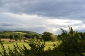 Water meadows, Eynsford