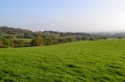 Ide Hill Walk approaching Scord Wood