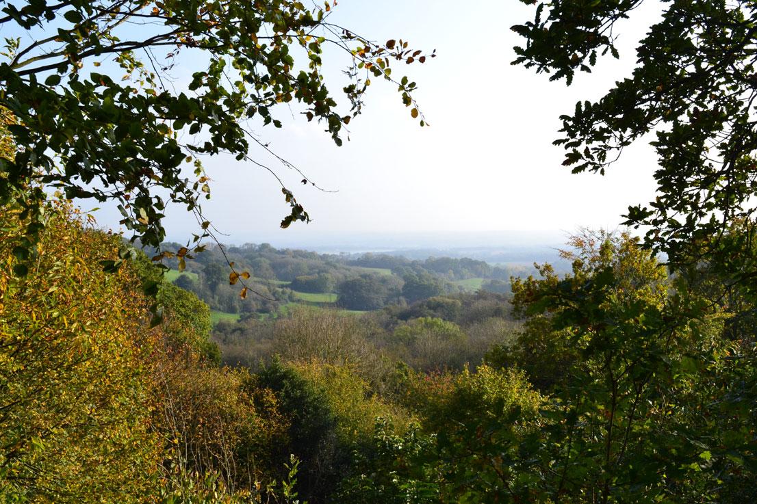 Emmetts Gardens view