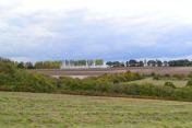 Poplars in the distance, Lullingstone/Eynsford