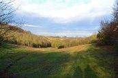 Dry valley Andrews/Meenfield woods, winter.