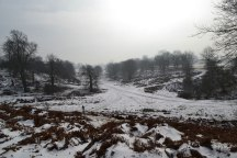 More snow this weekend for Knole