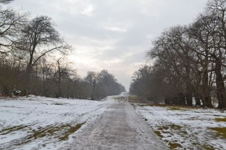 Chestnut Walk, Knole