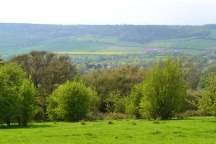 Darenth Valley view, walk 16