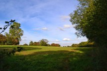 near-Knockholt-2018-10-07-15.42.59