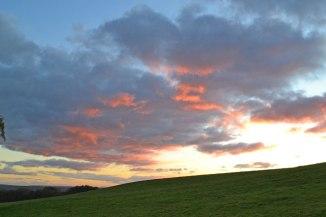 Evening sky, Scord wood