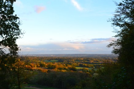 The Weald in the gloaming